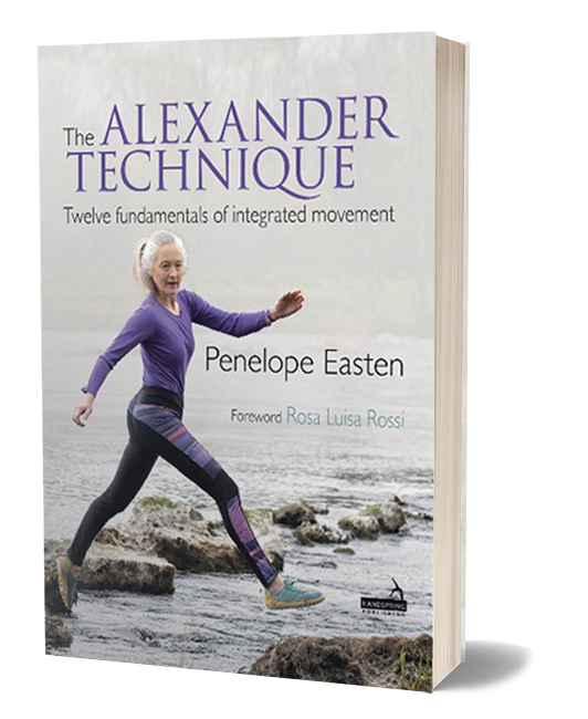 Alexander Technique: The twelve fundamentals of integrated movement book